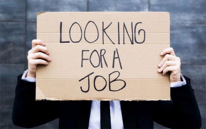 В поиске работы