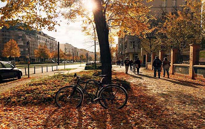 Погода в берлине осенью